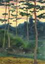 Watercolor landscape. A  summer evening in a pine forest Royalty Free Stock Photo