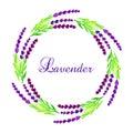Watercolor lavender frame