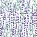 Watercolor lavender pattern
