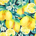 Watercolor lemon fruit branch with leaves seamless pattern Royalty Free Stock Photo