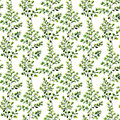 Watercolor maidenhair fern seamless pattern. Hand painted fern o