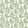 Watercolor maidenhair fern seamless pattern. Hand painted fern o
