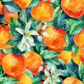 Watercolor mandarine orange fruit branch with leaves seamless pattern