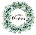 Watercolor Merry Christmas wreath with eucalyptus. Hand painted fir border with eucalyptus leaves and branches, white