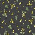 Watercolor mimosa vector pattern