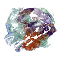 Watercolor monotype texture