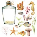 Watercolor nautical set with coral animals, plants and fish. Hand painted underwater branches, starfish, bottle isolated