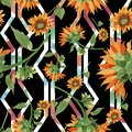 Watercolor orange sunflower flower. Floral botanical flower. Seamless background pattern.