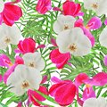 Watercolor orchid tulip palm leaves and monstera tropical seamless pattern