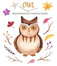 Watercolor owl and twigs, sticks, leaves, flowers.