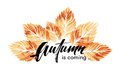 Watercolor painted autumn leaves banner. Fall background design. Vector illustration