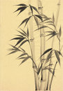 Watercolor painting of bamboo original art asian style Royalty Free Stock Images