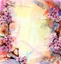 Watercolor Painting Cherry blossoms, Japanese cherry, Pink Sakura Royalty Free Stock Photo