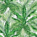 Watercolor painting coconut,banana,palm leaf,green leave seamless pattern background.Watercolor hand drawn illustration tropical e