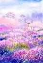 Watercolor Painting - Deer in lavender field