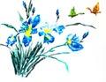 Watercolor painting of irises