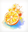 Watercolor painting juicy orange Royalty Free Stock Photo