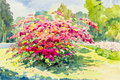 Watercolor painting original landscape pink,red of paper flowers Royalty Free Stock Photo