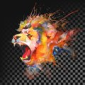 Watercolor painting. Lion. Transparent on dark background