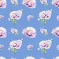 Beautiful white peony seamless pattern. Bouquet of flowers. Floral texture. Marker drawing.