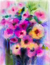 Watercolor painting. Yellow, Pink, Red color of daisy- gerbera