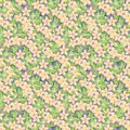 Watercolor pattern illustration, tropical flowers, pink and yellow plumeria Royalty Free Stock Photo