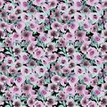 stock image of  Watercolor pattern with rose abstract flowers