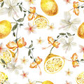 Watercolor pattern with tropical flowers and lemons Royalty Free Stock Photo