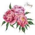 Watercolor Peonies Bouquet Iso...
