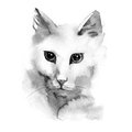 Watercolor photorealistic illustration - white cat