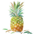 Watercolor Pineapple isolated on white background