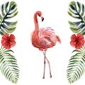 Watercolor pink flamingo isolated on a white background