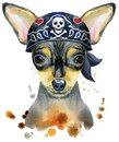 Watercolor portrait of toy terrier wearing biker bandana