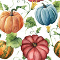 Watercolor pumpkin pattern. Hand painted pumpkin ornament with flower, leaves and branch isolated on white background Royalty Free Stock Photo