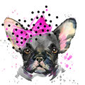 Watercolor puppy dog illustration. French Bulldog breed.