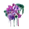 Watercolor purple flower.
