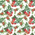 Watercolor red Campsis on white background. Floral seamless pattern.