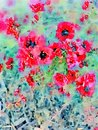 Watercolor red flowers wall art background Royalty Free Stock Photo