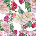 Watercolor red petunia with spring flowers. Seamless pattern on a white background.