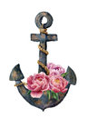 Watercolor retro anchor with rope and peony flowers. Vintage illustration isolated on white background. For design, prints or back