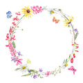 Watercolor round frame with wildflowers Royalty Free Stock Photo