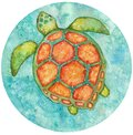 Watercolor round illustration of see turtle from above