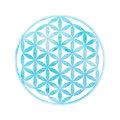 Watercolor sacred geometry flower of life vector element with texture Stock Photography