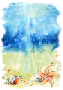 Watercolor sea bottom illustration with sea shells and starfishes Royalty Free Stock Photo