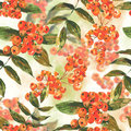 Watercolor seamless background with ash berry see my other works in portfolio Stock Photos