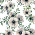 Watercolor seamless pattern with anemone. Hand painted white flower, eucalyptus leaves, berry and juniper isolated on