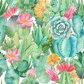 Watercolor seamless pattern with compositions of succulents, flowers.