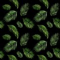 Watercolor seamless pattern with green palm tree leaves on black background