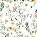 Watercolor seamless pattern of hand drawn wildflowers