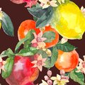 Watercolor seamless pattern of isolated hand drawn oranges, pomegranate, lemon and flowers in sketch style on black